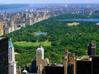 Visita de Estudo a Nova Iorque